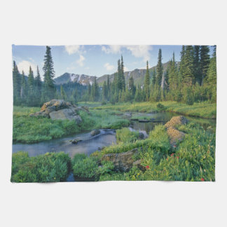 Picnic Creek in the Jewel Basin of the Swan Tea Towel