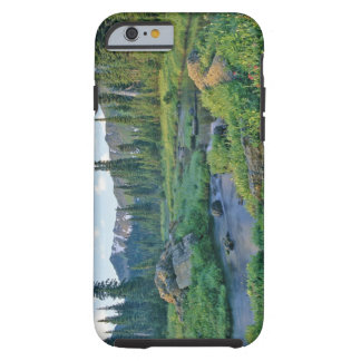 Picnic Creek in the Jewel Basin of the Swan Tough iPhone 6 Case