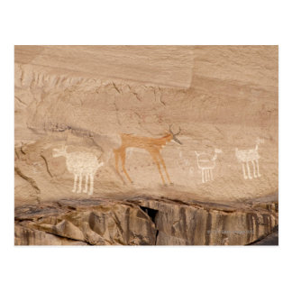 Pictographs of antelope, sheep and goats on postcard