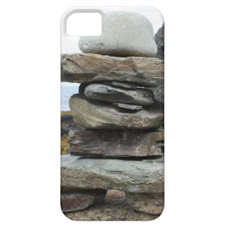Picture 100.jpg iPhone 5 cases