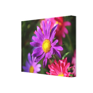 Picture Canvas Print