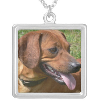 Picture of a Dachshund Necklace