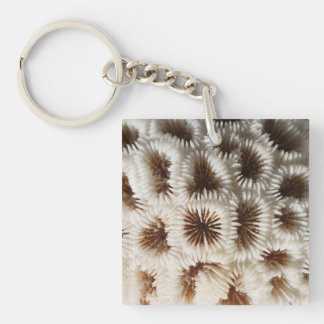 Picture of Coral. Key Ring