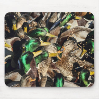 Picture of Ducks in a Crowd Mouse Pad