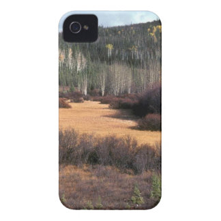 PICTURE OF FALL IN MOUNTAINS Case-Mate iPhone 4 CASE