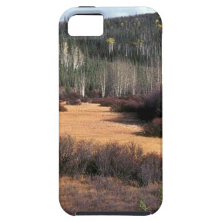PICTURE OF FALL IN MOUNTAINS iPhone 5 COVERS