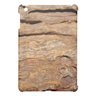 Picture of Fossilized Wood. iPad Mini Case