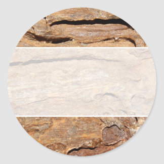 Picture of Fossilized Wood. Classic Round Sticker