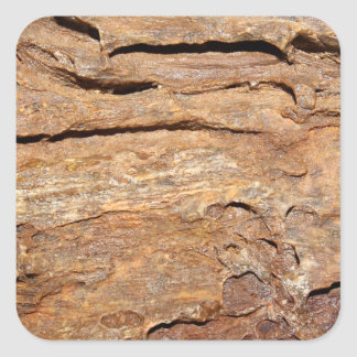 Picture of Fossilized Wood. Square Stickers