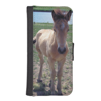 Picture of Horses - A Young Horse Foal Standing iPhone SE/5/5s Wallet Case