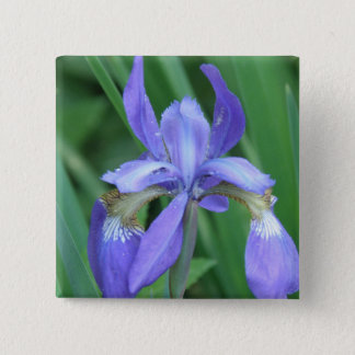 Picture of Iris Square Pin