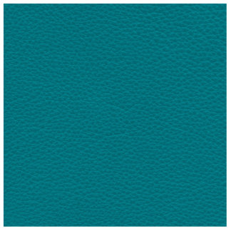 Picture of Teal Leather. Photo Sculpture Magnet
