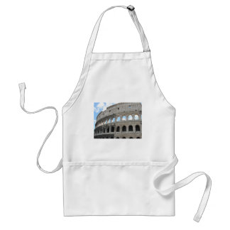 Picture of the Roman Colosseum - Colosseo Aprons