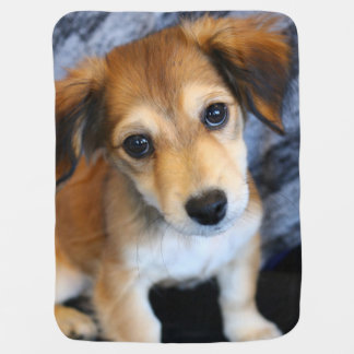 Picture Perfect Puppy Baby Blanket