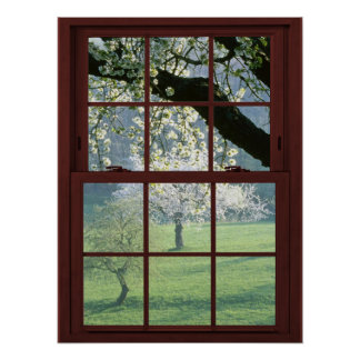 Picture Window Landscape - Cherry Blossoms Poster