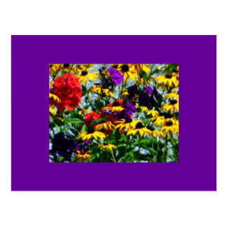 Picturesque Colorful Flowers Postcard