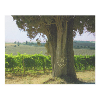 Picturesque Countryside Tree Heart Save the Date Postcard