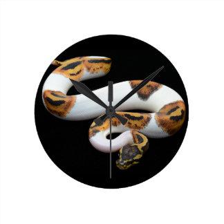 piebald ball python round clock
