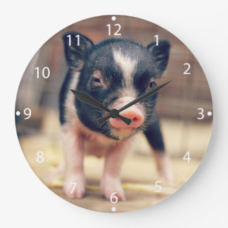 Piebald Pig puppy for Pig Lovers Large Clock