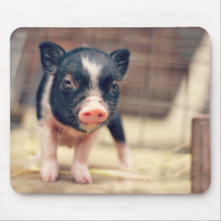 Piebald Pig puppy for Pig Lovers Mouse Mat