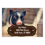 Piebald Pig puppy for Pig Lovers Pack Of Chubby Business Cards