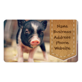 Piebald Pig puppy for Pig Lovers Pack Of Standard Business Cards