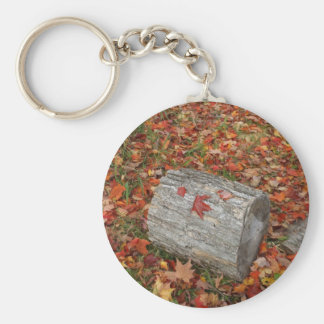 Piece of Wood in Fall Leaves Basic Round Button Key Ring