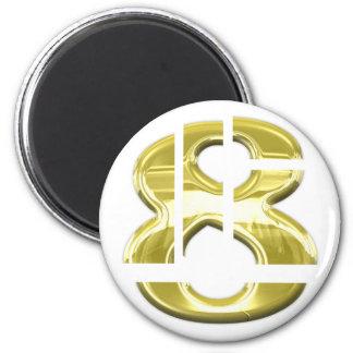 Pieces of 8 6 cm round magnet