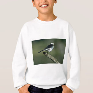 Pied Wagtail Sweatshirt