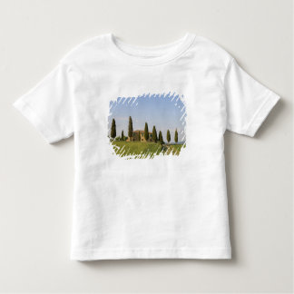 Pienza, Val d'Orcia, Siena province, Tuscany, T-shirts