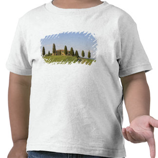 Pienza, Val d'Orcia, Siena province, Tuscany, Tshirts