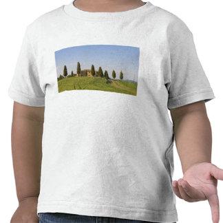 Pienza, Val d'Orcia, Siena province, Tuscany, Shirts