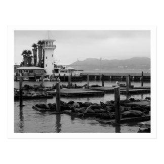 Pier 39 postcard