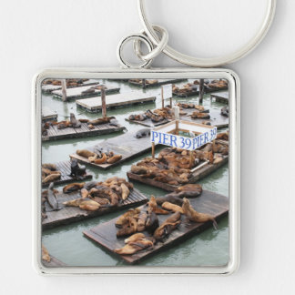 Pier 39 Sea Lions in San Francisco Silver-Colored Square Key Ring