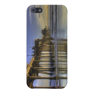 Pier Surfer Case For The iPhone 5