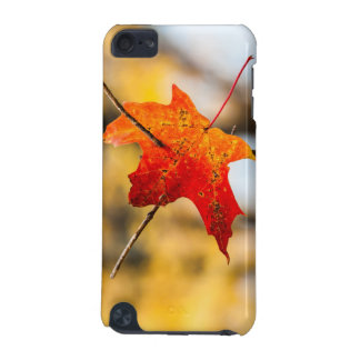 pierced in autumn iPod touch (5th generation) cases
