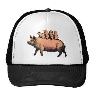 pig and piglets hats