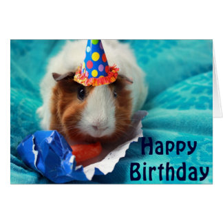 Pig Birthday Card