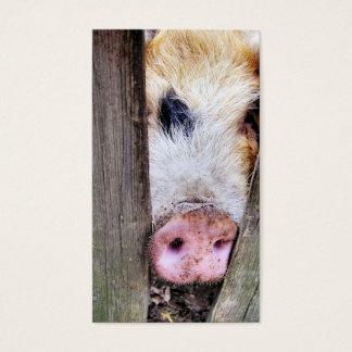PIG BUSINESS CARD