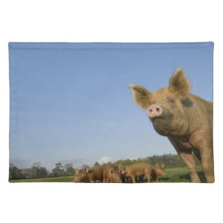 Pig in a Field Placemats