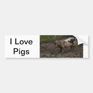 Pig in muck bumper sticker
