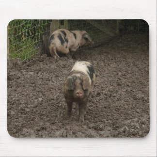 Pig in mud mouse mat
