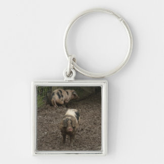 Pig in mud Silver-Colored square key ring
