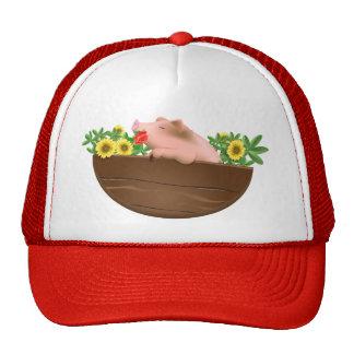 Pig in Pan Hats