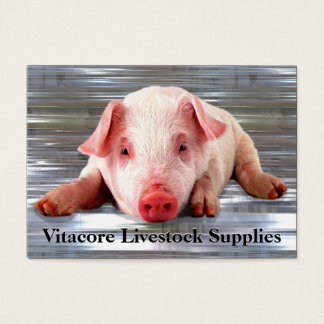 Pig  Professional Business Card