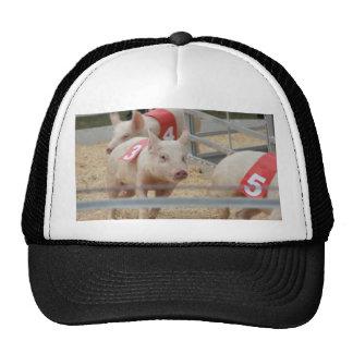 Pig racing pink piglet number three trucker hat