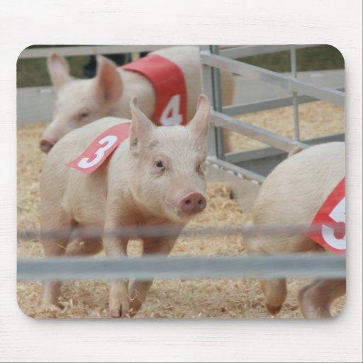 Pig racing pink piglet number three mousepad