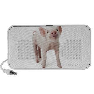 Pig Standing Looking Up Portable Speaker