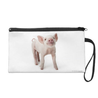 Pig Standing Looking Up Wristlet Purse