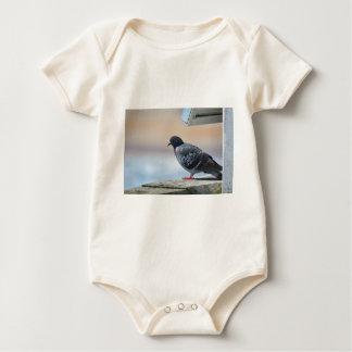 Pigeon Baby Bodysuit